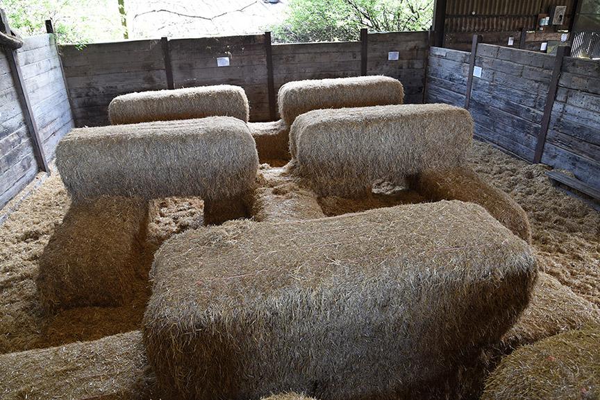 Middle Farm | Play Barn