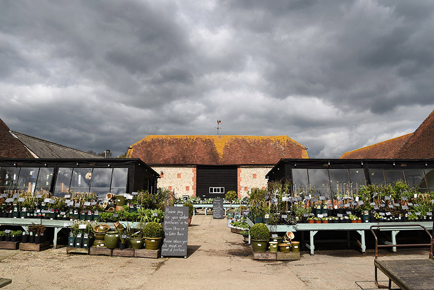 Middle Farm | Flower Sales